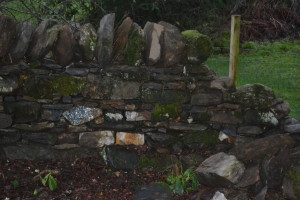 Dry Stone Walling 1